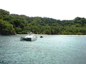 Turtle Island 2