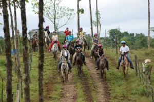 Tour a caballo