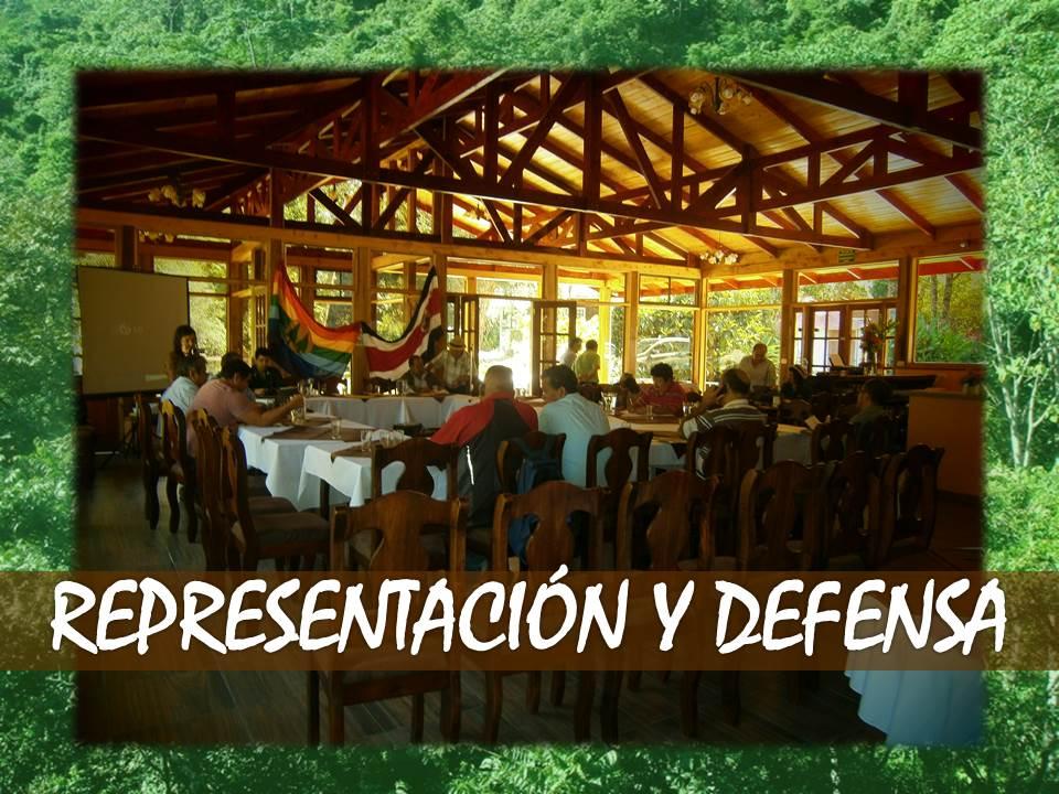 REPRESENTACIÓN Y DEFENSA